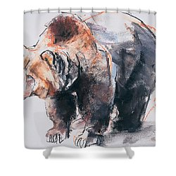 European Brown Bear Shower Curtain
