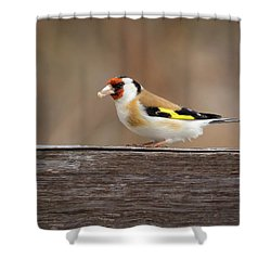 Shower Curtain featuring the photograph European Goldfinch In Kenosha by Ricky L Jones