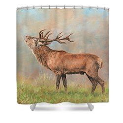 Shower Curtain featuring the painting European Red Deer by David Stribbling