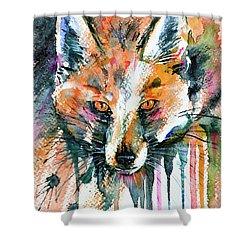 European Red Fox Shower Curtain