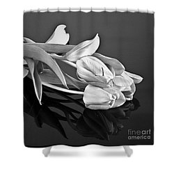 Even Tulips Are Beautiful In Black And White Shower Curtain by Sherry Hallemeier