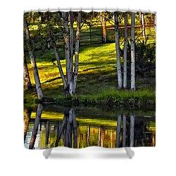 Evening Birches Shower Curtain by Steve Harrington
