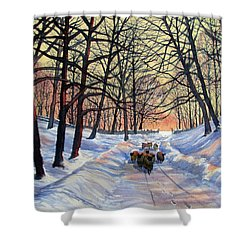 Evening Glow On A Winter Lane Shower Curtain