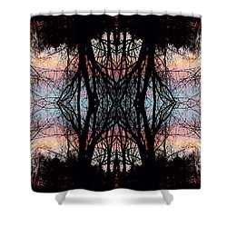 Evening Kaleidoscope Shower Curtain by Joy Nichols