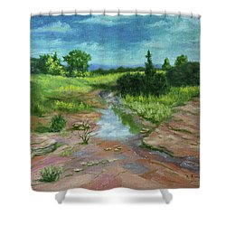 Shower Curtain featuring the painting Evening Light by Roena King