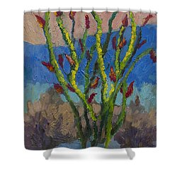Evening Ocotillo Shower Curtain