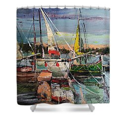 Evening Pause Shower Curtain