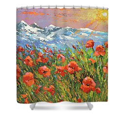 Evening Poppies  Shower Curtain by Dmitry Spiros