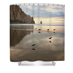 Evening Reflection Shower Curtain by Sharon Foster
