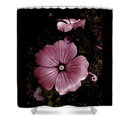 Evening Rose Mallow Shower Curtain