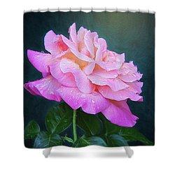 Evening Rose Shower Curtain