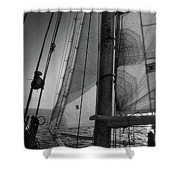 Evening Sail Bw Shower Curtain