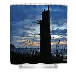 Shower Curtain featuring the photograph Evening Silohuettes by Michele Penner