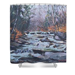 Evening Spillway Shower Curtain by Alicia Drakiotes