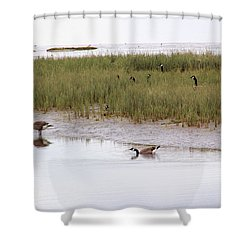 Evening Stollers Shower Curtain