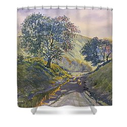 Evening Stroll In Millington Dale Shower Curtain