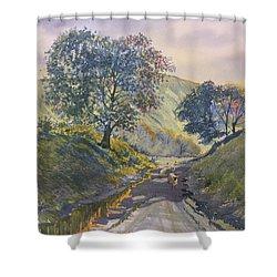 Evening Stroll In Millington Dale Shower Curtain