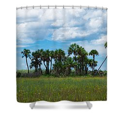 Everglades Landscape Shower Curtain by Christopher L Thomley