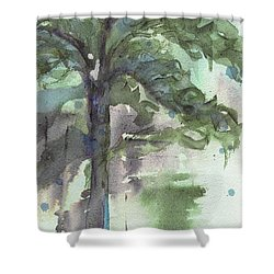 Shower Curtain featuring the painting Evergreen by Dawn Derman
