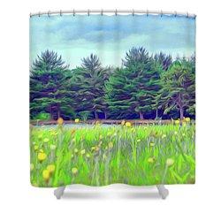 Evergreen Lake - Impressionism Shower Curtain