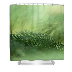 Evergreen Mist Shower Curtain by Ann Lauwers