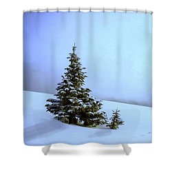 Shower Curtain featuring the painting Evergreen Offspring P D P by David Dehner