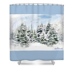 Evergreens Shower Curtain by John Selmer Sr
