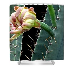 Every Cactus Flower Has It's Thorns  Shower Curtain