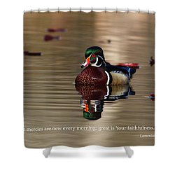Shower Curtain featuring the photograph Every Morning by Lynn Hopwood