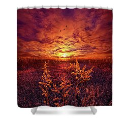 Shower Curtain featuring the photograph Every Sound Returns To Silence by Phil Koch