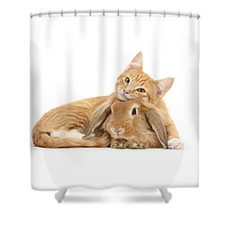 Everybody Needs A Bunny For A Pillow Shower Curtain