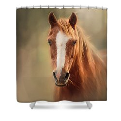 Everyone's Favourite Pony Shower Curtain
