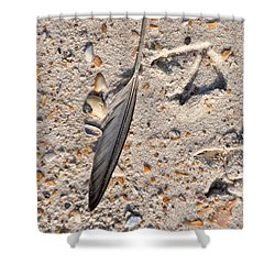 Shower Curtain featuring the photograph Evidence by Jan Amiss Photography