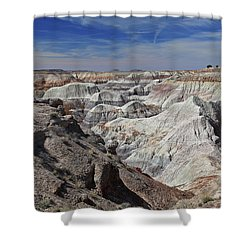 Evident Erosion Shower Curtain