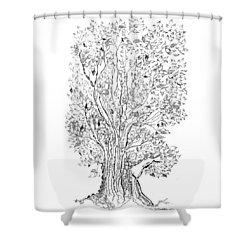Evolutionary Tree Shower Curtain by Regina Valluzzi