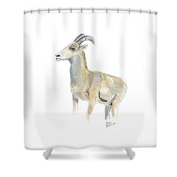 Ewe Shower Curtain