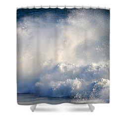 Exhilaration  Shower Curtain by Dianne Cowen