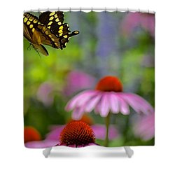 Exit Stage Left Shower Curtain by Tim Good