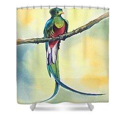 Exotic Bird Shower Curtain
