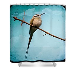 Shower Curtain featuring the photograph Exotic Birds - White Throated Bee Eater by Gary Heller