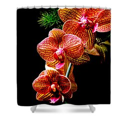 Exotic Cascade Of Orchids Shower Curtain by Julie Palencia