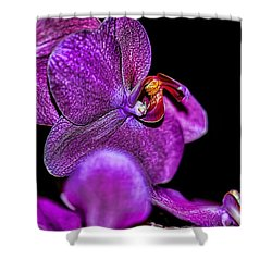 Shower Curtain featuring the photograph Exotic by Diana Mary Sharpton