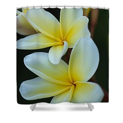 Shower Curtain featuring the photograph Exotic by Julie Andel