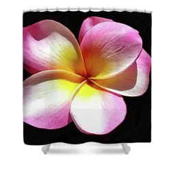 Exotic Plumeria Shower Curtain