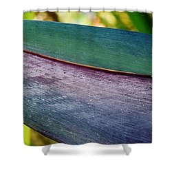 Shower Curtain featuring the photograph Exotic by Werner Lehmann