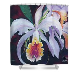 Exotic White Orchid Shower Curtain