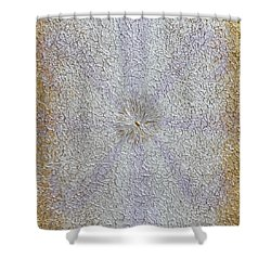 Expansion Shower Curtain by Georgeta  Blanaru