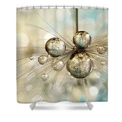 Exploding Dandy Drops Shower Curtain by Sharon Johnstone
