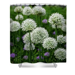 Exquisite Beauty Shower Curtain