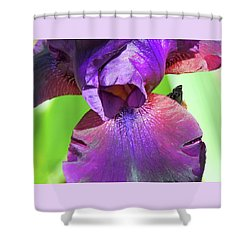 Shower Curtain featuring the photograph Getting Initmate With Iris by Brooks Garten Hauschild